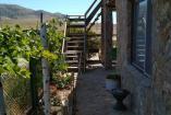Отдельный двор с 2 номерами и кухней ( 75 кв м ) до 5 чел. вместимость         гостевой  дом Судак
